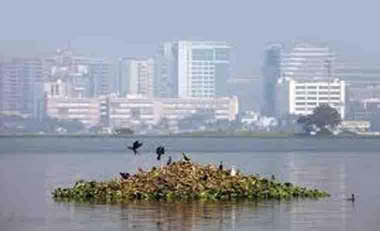 Park Street Escorts In Kolkata